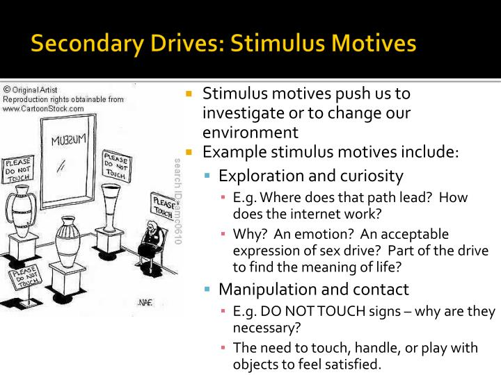 Secondary Drives: Stimulus Motives