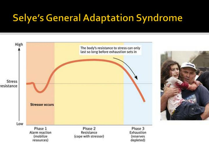 Selye's General Adaptation Syndrome