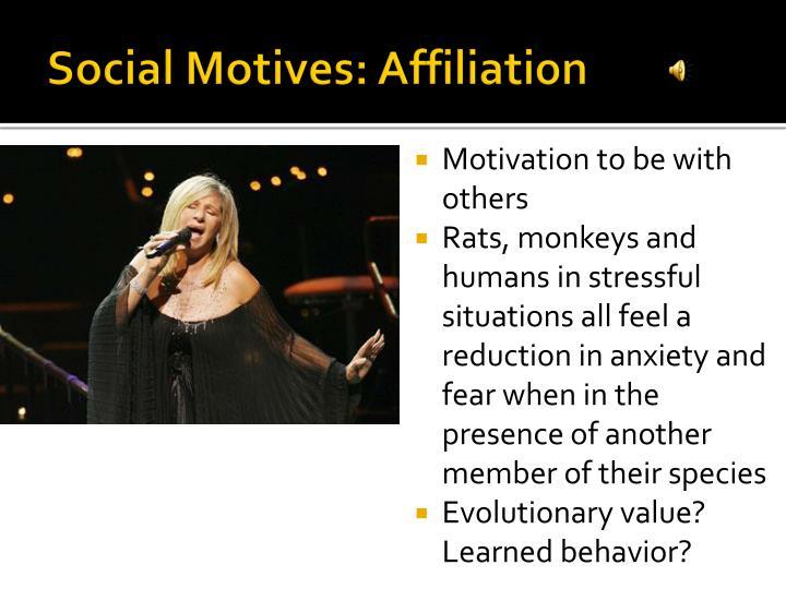 Social Motives: Affiliation