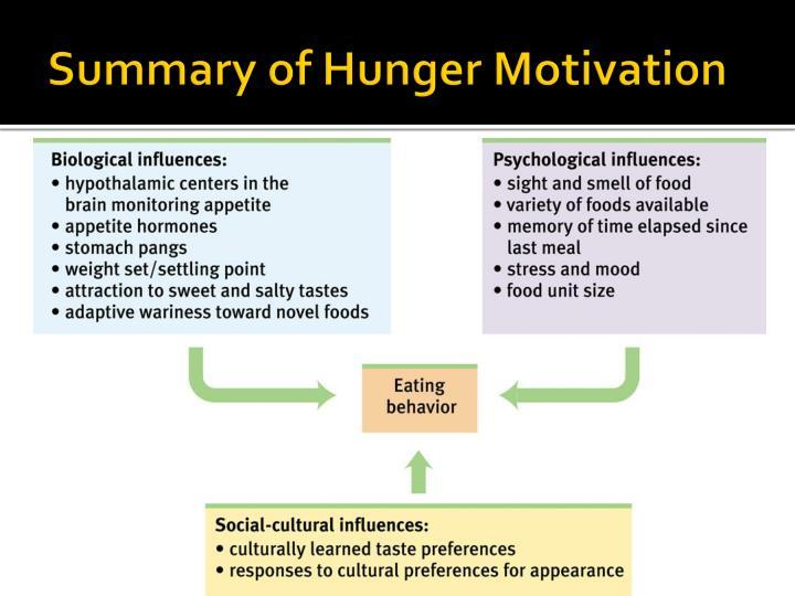 Summary of Hunger Motivation