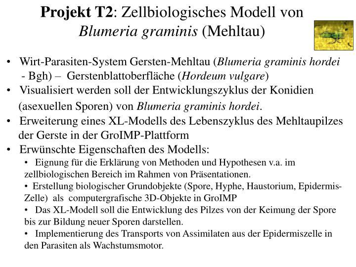Projekt T2