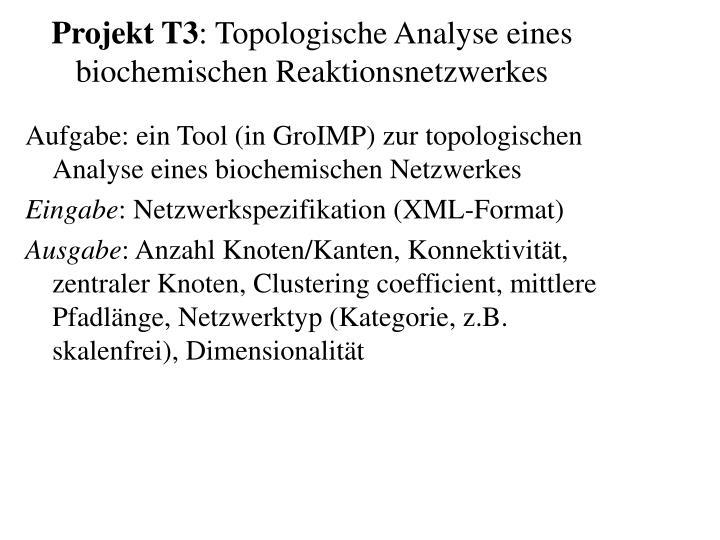 Projekt T3