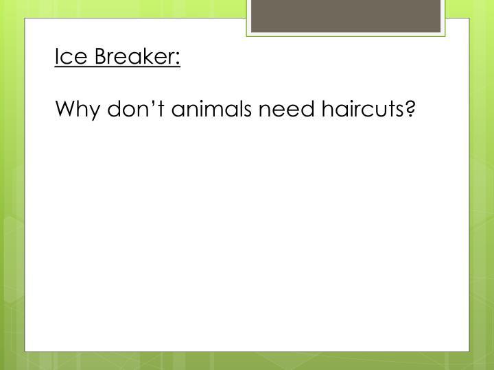 Ice Breaker: