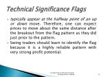 technical significance flags