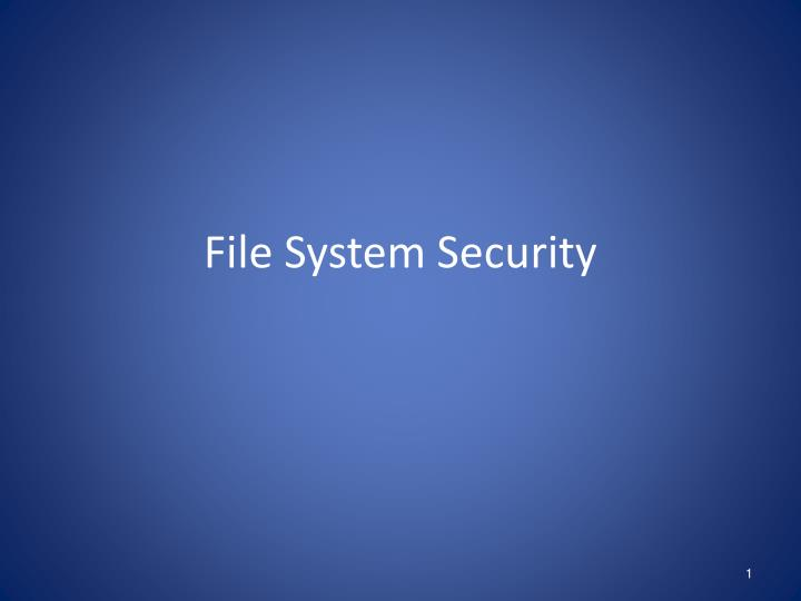 file system security n.