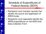 schedule of expenditures of federal awards sefa