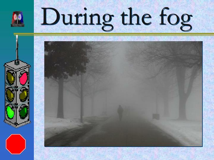 D uring the fog