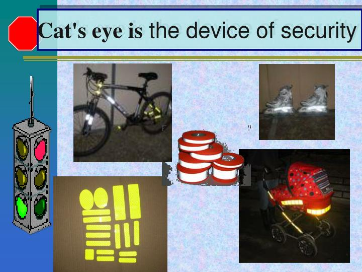 Cat's eye is