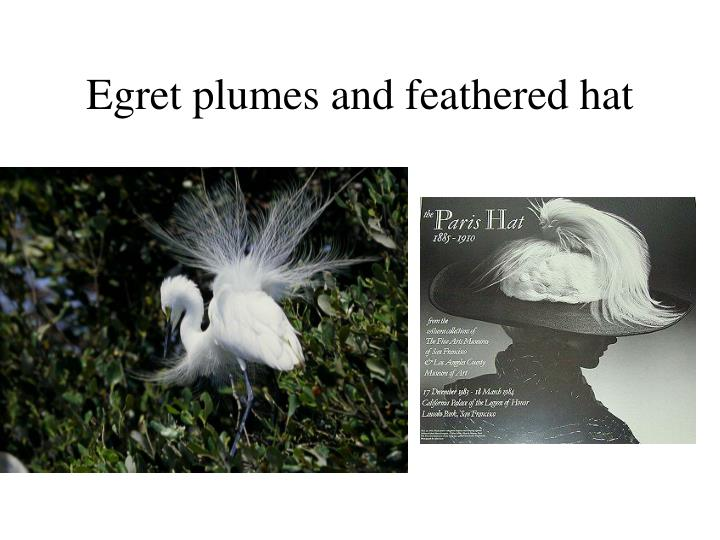 Egret plumes and feathered hat