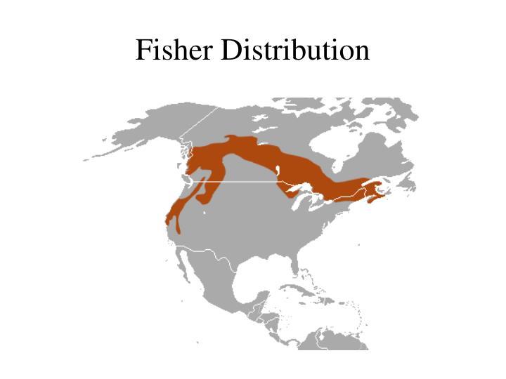 Fisher Distribution