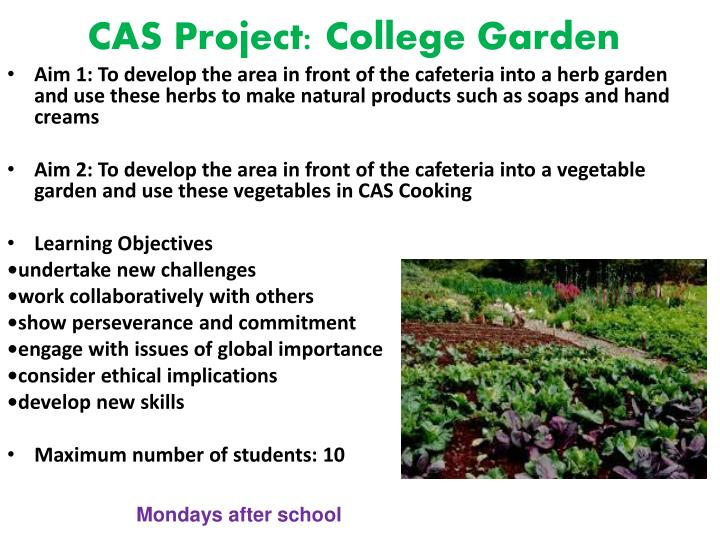 CAS Project: College