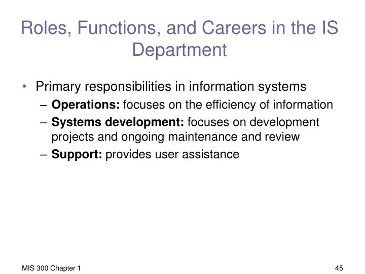 Roles, Functions, and Careers in the IS Department