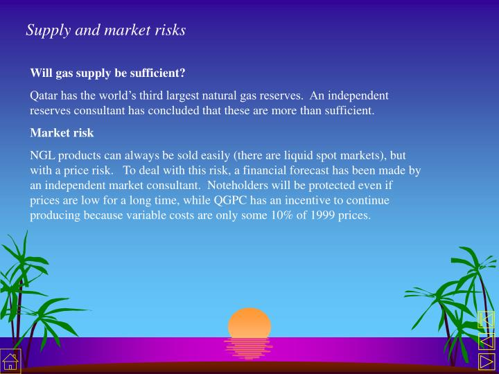 Supply and market risks