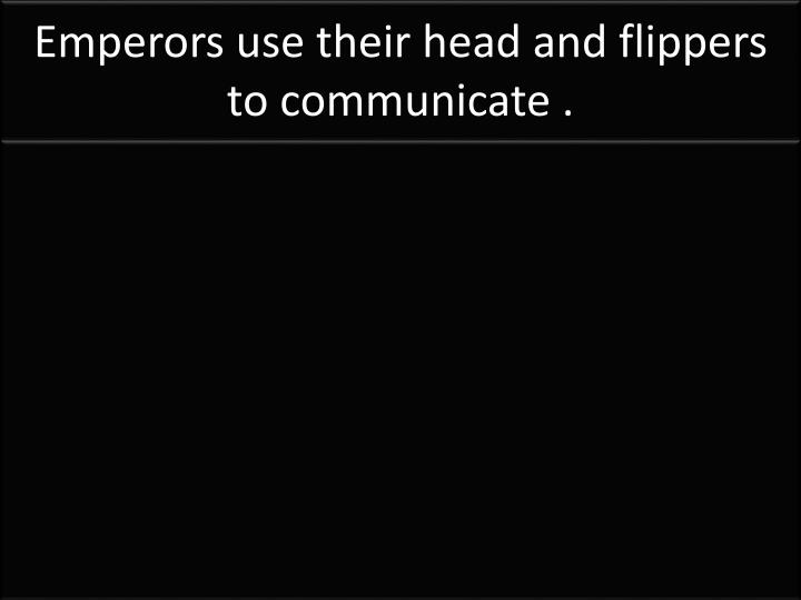 Emperors use their head and flippers to communicate .