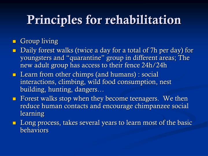 Principles for rehabilitation