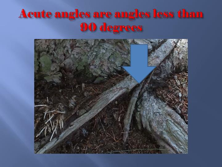 Acute angles are angles less