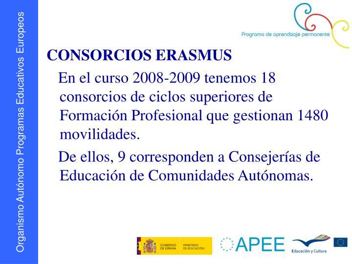 CONSORCIOS ERASMUS