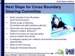 next steps for cross boundary steering committee