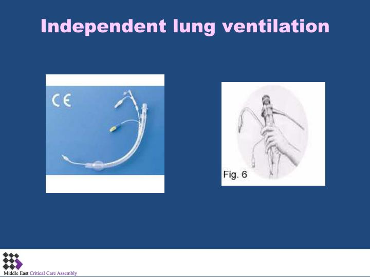 Independent lung ventilation