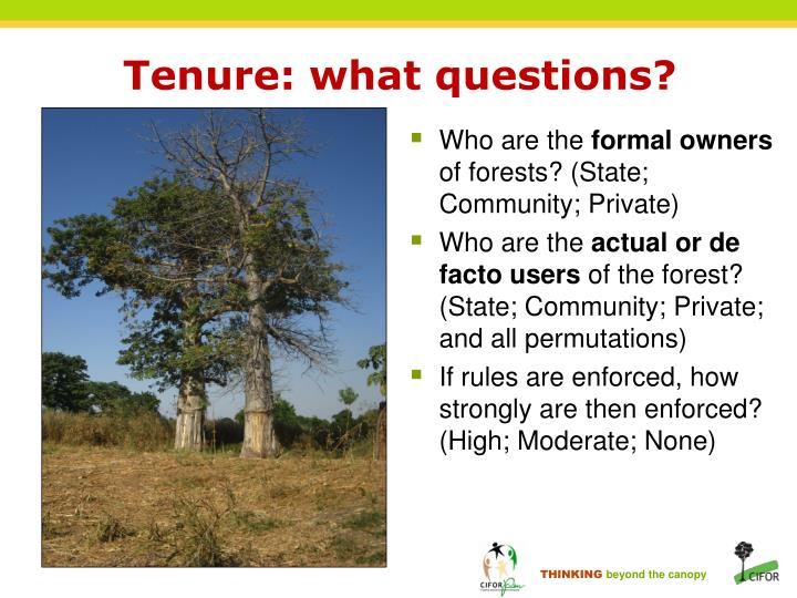Tenure: what questions?