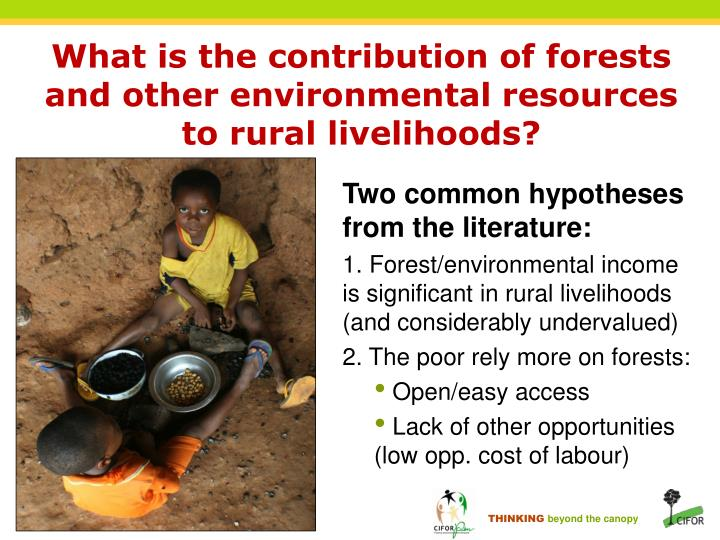 What is the contribution of forests and other environmental resources to rural livelihoods?