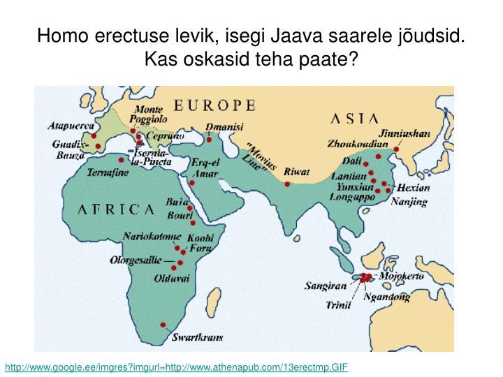 Homo erectuse levik, isegi Jaava saarele jõudsid. Kas oskasid teha paate?