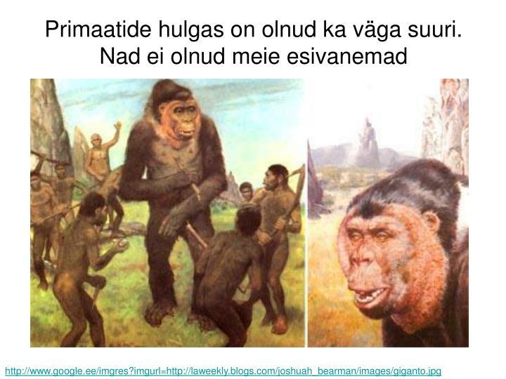 Primaatide hulgas on olnud ka väga suuri. Nad ei olnud meie esivanemad