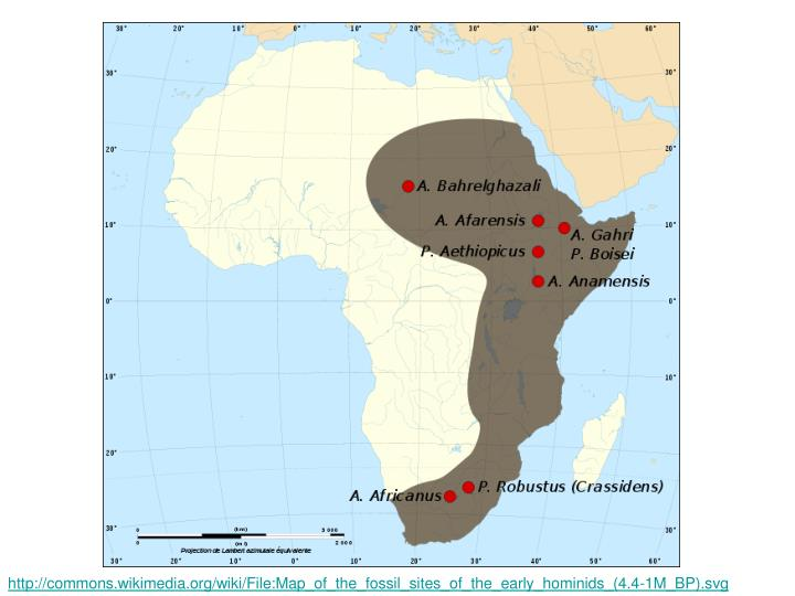 http://commons.wikimedia.org/wiki/File:Map_of_the_fossil_sites_of_the_early_hominids_(4.4-1M_BP).svg