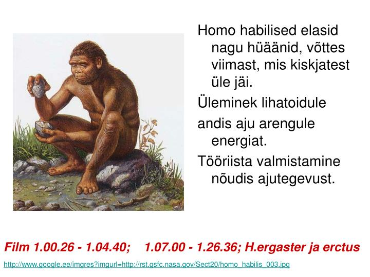 Homo habilised elasid nagu hüäänid, võttes viimast, mis kiskjatest üle jäi.