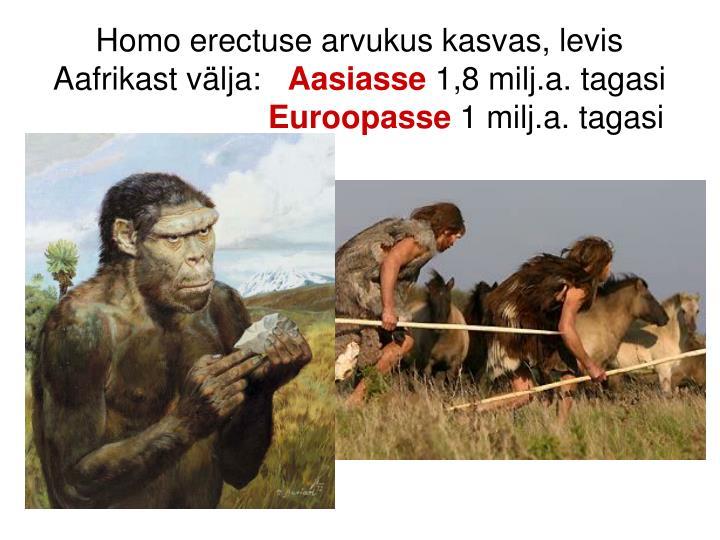 Homo erectuse arvukus kasvas, levis Aafrikast välja: