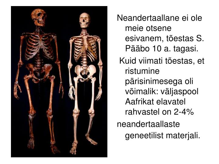 Neandertaallane ei ole meie otsene esivanem, tõestas S. Pääbo 10 a. tagasi.