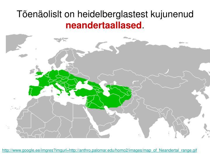Tõenäolislt on heidelberglastest kujunenud