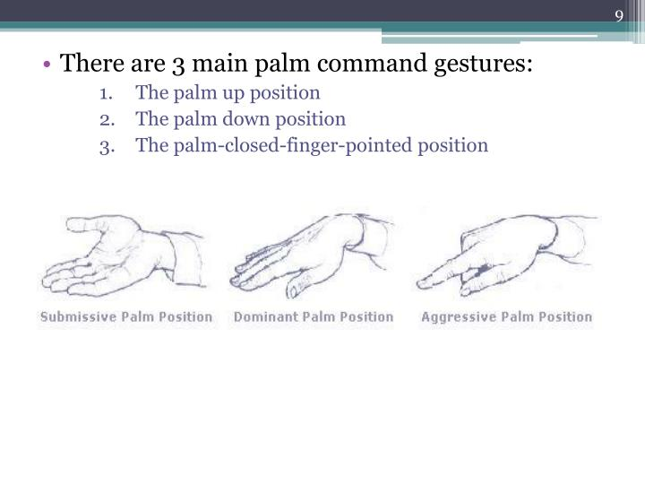 There are 3 main palm command gestures: