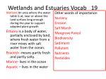 wetlands and estuaries vocab 19
