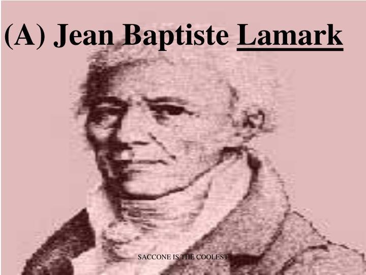 (A) Jean Baptiste