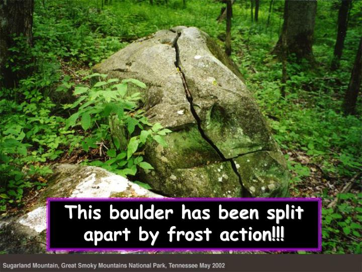 This boulder has been split apart by frost action!!!