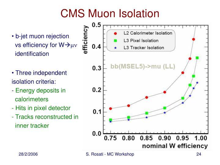 CMS Muon Isolation