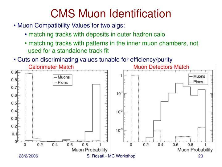 CMS Muon Identification