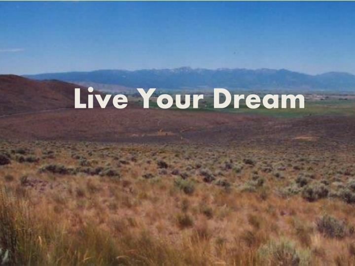 live your d ream n.