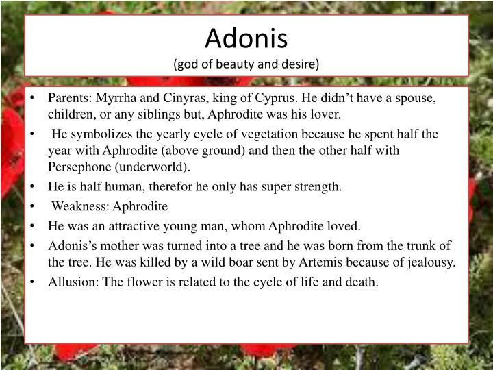 Adonis god of beauty and desire