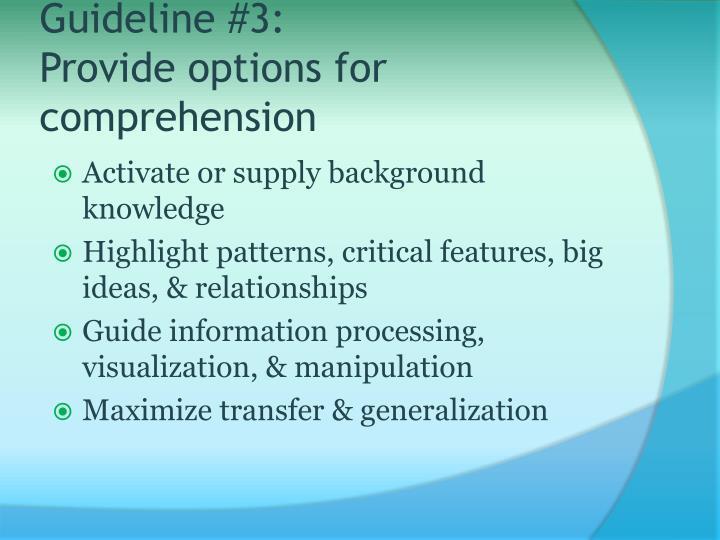 Guideline #3: