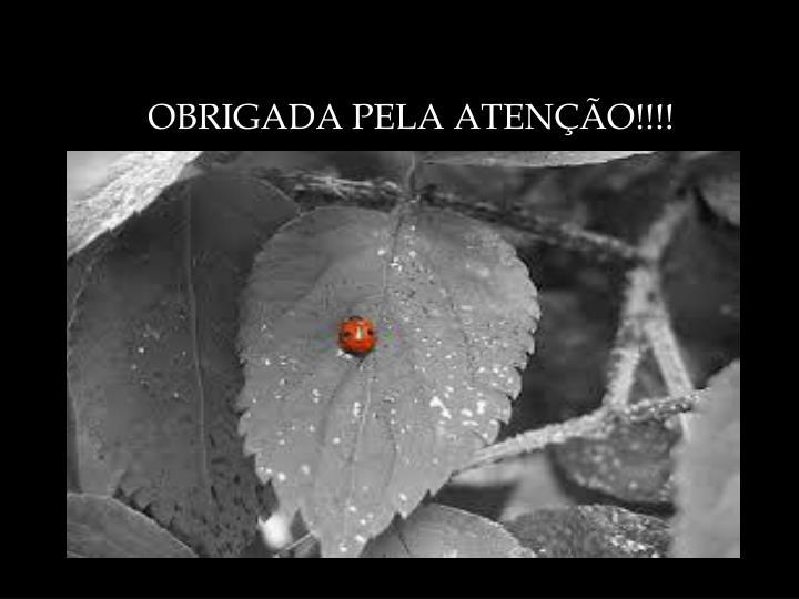 OBRIGADA PELA ATENÇÃO!!!!