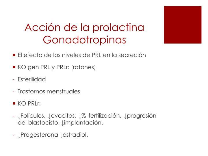 Acción de la prolactina Gonadotropinas