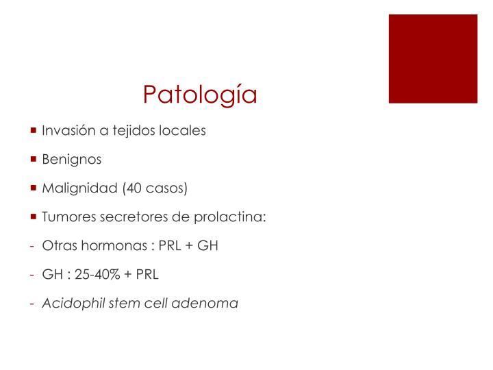 Patolog