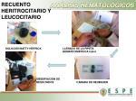 an lisis hematol gicos4