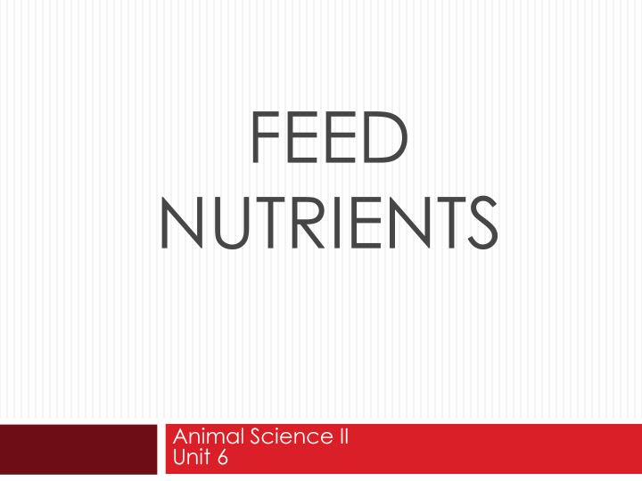 feed nutrients n.