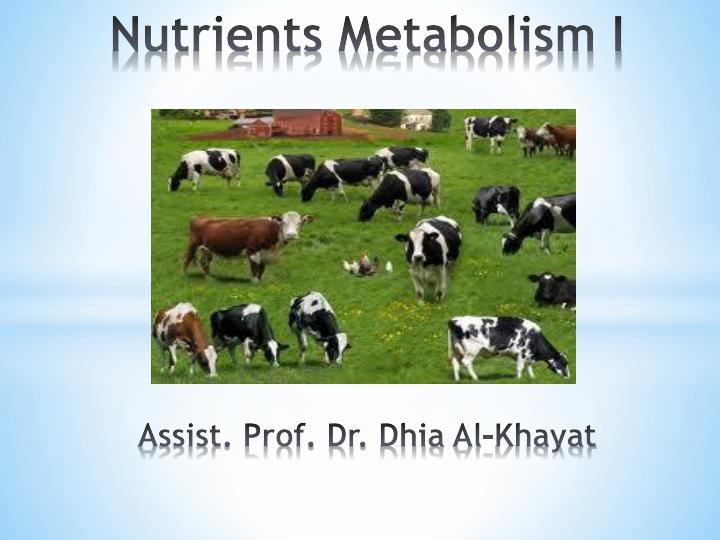 nutrients metabolism i assist prof dr dhia al khayat
