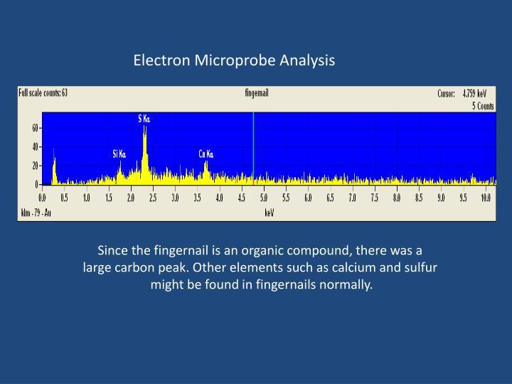 Electron Microprobe Analysis