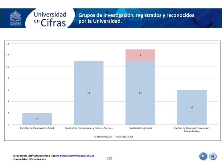 Grupos de investigación, registrados y reconocidos