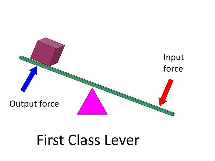 Input force